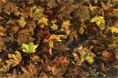 Photograph - Decayed Autumn Leaves On The Ground Strong Stroke by Ricardo Dominguez