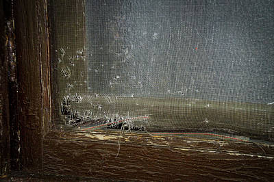 Creepy Mixed Media - Decaying Window Screen by Thomas Woolworth