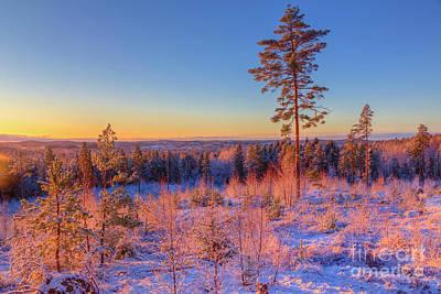 Hoarfrost Wall Art - Photograph - December 6 by Veikko Suikkanen