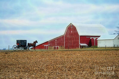Photograph - December Buggy And Star Barn by David Arment