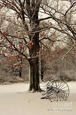 Photograph - December Morning by Diane E Berry