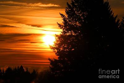 Photograph - December Sunrise by Nick Gustafson
