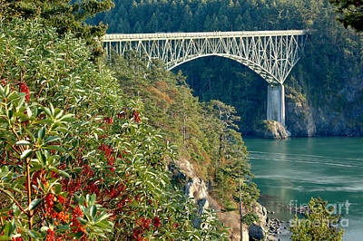 Photograph - Deception Pass Bridge by Adam Jewell