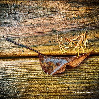 Photograph - Deck Art by R Thomas Berner