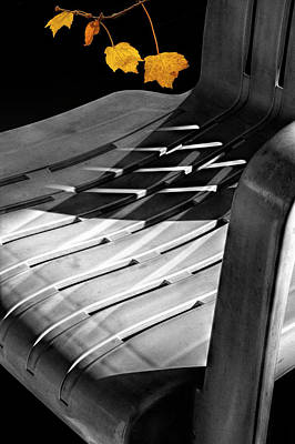 Photograph - Deck Chair Shadows With Orange Autumn Leaves by Randall Nyhof
