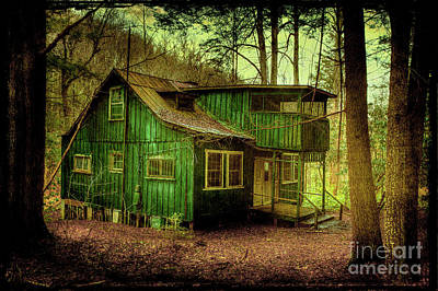 Abandoned Elkmont Wall Art - Photograph - Declining by Michael Eingle
