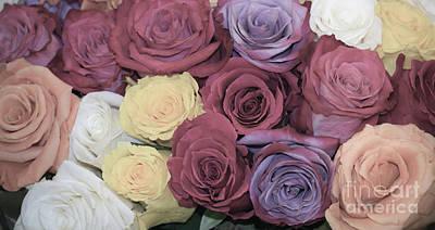Decorative Wallart Brilliant Roses Photo C41217 Art Print