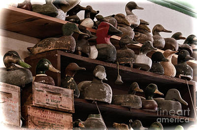 Photograph - Decoys - D010180 by Daniel Dempster