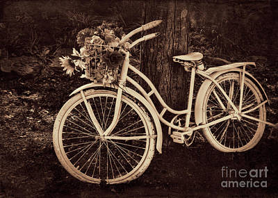 Photograph - Dedication Bicycle In Sepia by Janice Rae Pariza