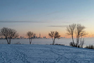 Photograph - Deep Arctic Freeze Dawn In Toronto by Georgia Mizuleva