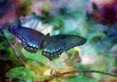 Photograph - Deep Blue 4621 Idp_2 by Steven Ward