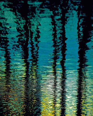 Photograph - Deep Blue by Gillis Cone