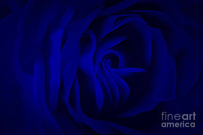 Photograph - Deep Blue Passion by Krissy Katsimbras