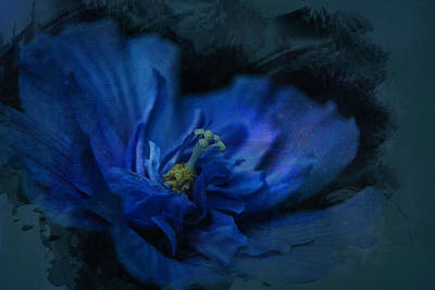 Digital Art - Deep Blue by Richard Ricci
