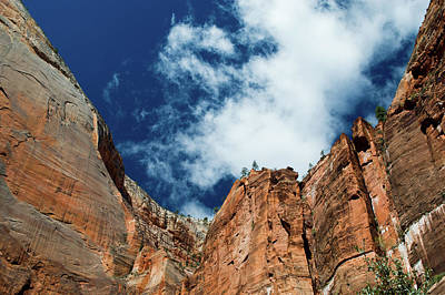 Photograph - Deep Blue Sky Over Zion National Park by Mike Shaw