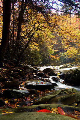 Art Print featuring the photograph Deep Creek Mountain Stream by Bob Decker