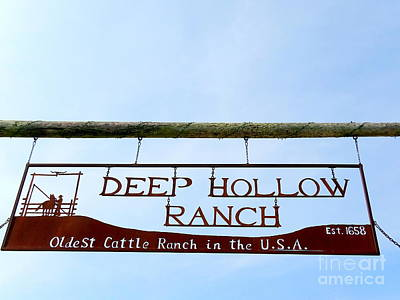 Photograph - Deep Hollow Ranch by Ed Weidman