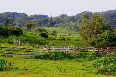 Photograph - Deep Hollow Ranch Montauk by Christopher Kirby