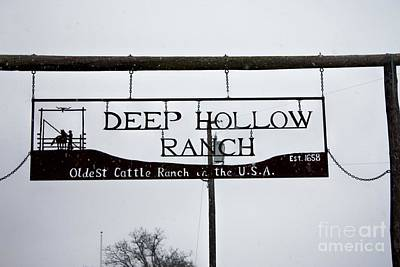 Photograph - Deep Hollow Ranch Oldest Cattle Ranch In The Usa by John Telfer