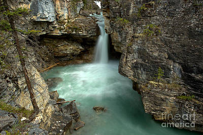 Photograph - Deep In Beauty Creek by Adam Jewell