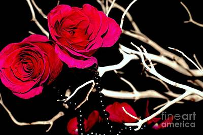 Photograph - Deep Pink by Diana Mary Sharpton