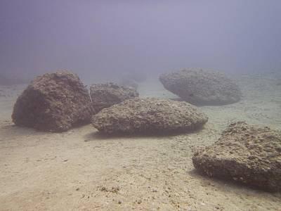 Photograph - Deep Rocks by Michael Scott