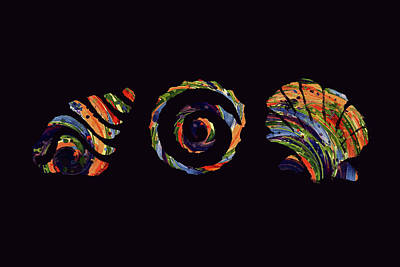 Digital Art - Deep Sea Shell Trio by Deborah Smith