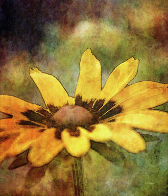 Photograph - Deep Shine 3927 Idp_2 by Steven Ward