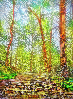 Digital Art - Deep Woods Dreamtime by Joel Bruce Wallach