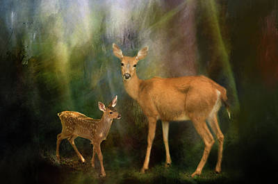 Photograph - Deer 1 by Marilyn Wilson