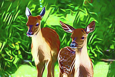 Photograph - Deer 20218 by Ray Shrewsberry