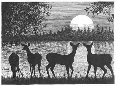 Drawing - Deer At Dusk by Lawrence Tripoli