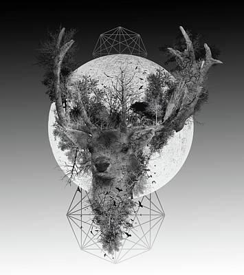 Digital Art - Deer by Bekim Art