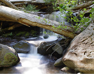 Photograph - Deer Creek 03 by Peter Piatt