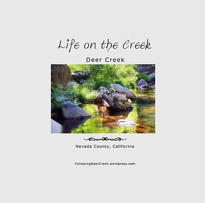 Digital Art - Deer Creek Ferns by Lisa Redfern