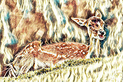 Mixed Media - Deer Fawn by Lita Kelley