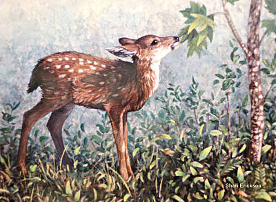 Painting - Deer Fawn by Shari Erickson