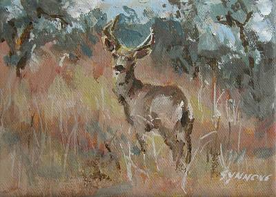 Painting - Deer In A Field by Synnove Pettersen