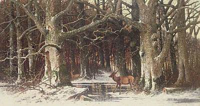 Winter In The Country Painting - Deer In The Forest by G Schneyder