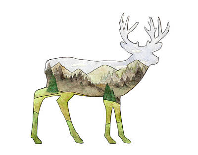 Painting - Deer by Kim W Nolan