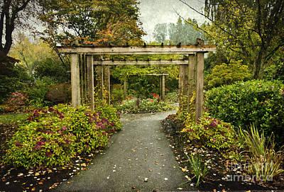 Fall In The Garden At Deer Lake Art Print