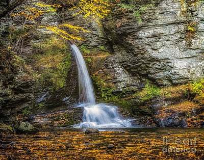 Photograph - Deer Leap Falls In Autumn by Nick Zelinsky