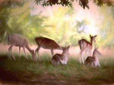 Textured Drawing - Deer Park by Sharon Lisa Clarke