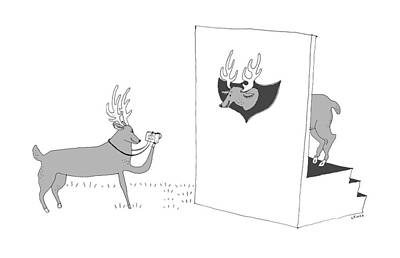 Drawing - Deer Photographer by Liana Finck