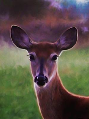 Deer Portrait Art Print by Barbara St Jean