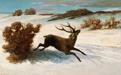 Painting - Deer Running In Snow by Gustave Courbet