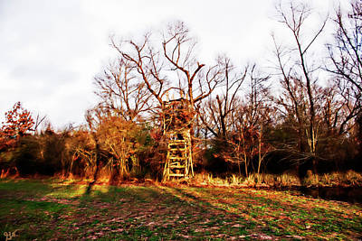 Photograph - Deer Stand 2 by Gina O'Brien
