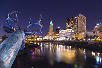 Photograph - Deer View Columbus by Alan Raasch