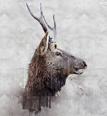 Digital Art - Deer Watching by Yury Malkov