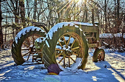Photograph - Deere In The Light by Bonfire Photography